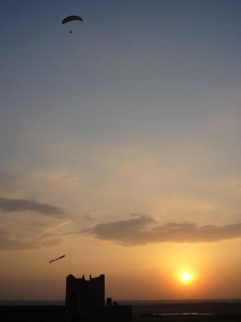 bi au soleil couchant