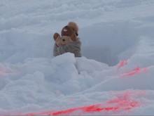 la Marmotte !!!
